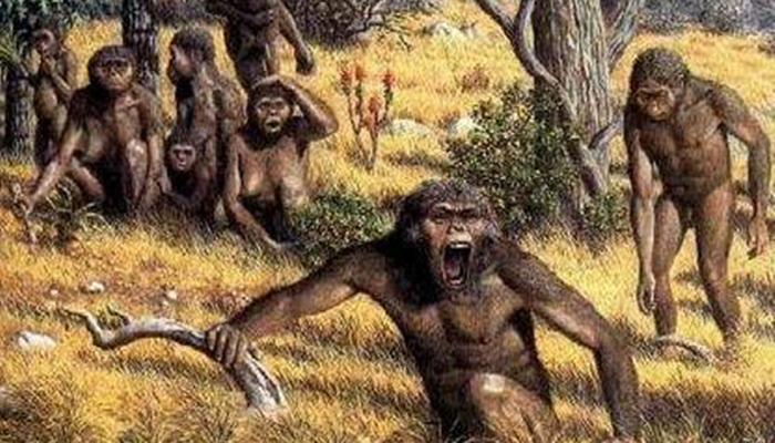 Meganthropus Paleojavanicus
