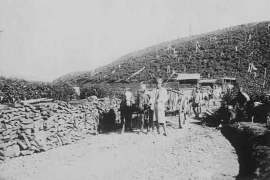5 pekerja perkebunan kina dan teh di sedep priangan siap untuk memuat potongan kayu kina 1920 e28093 1940 collectie tropenmuseum